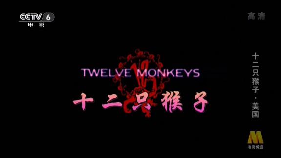 图片:美国电影《十二只猴子》
